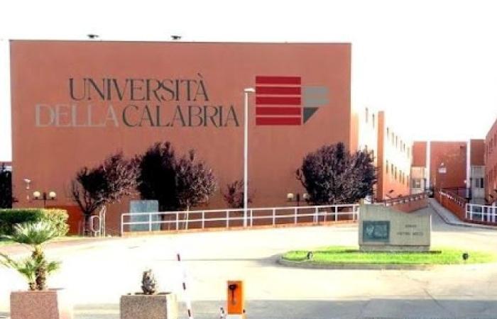 Calabria Üniversitesi